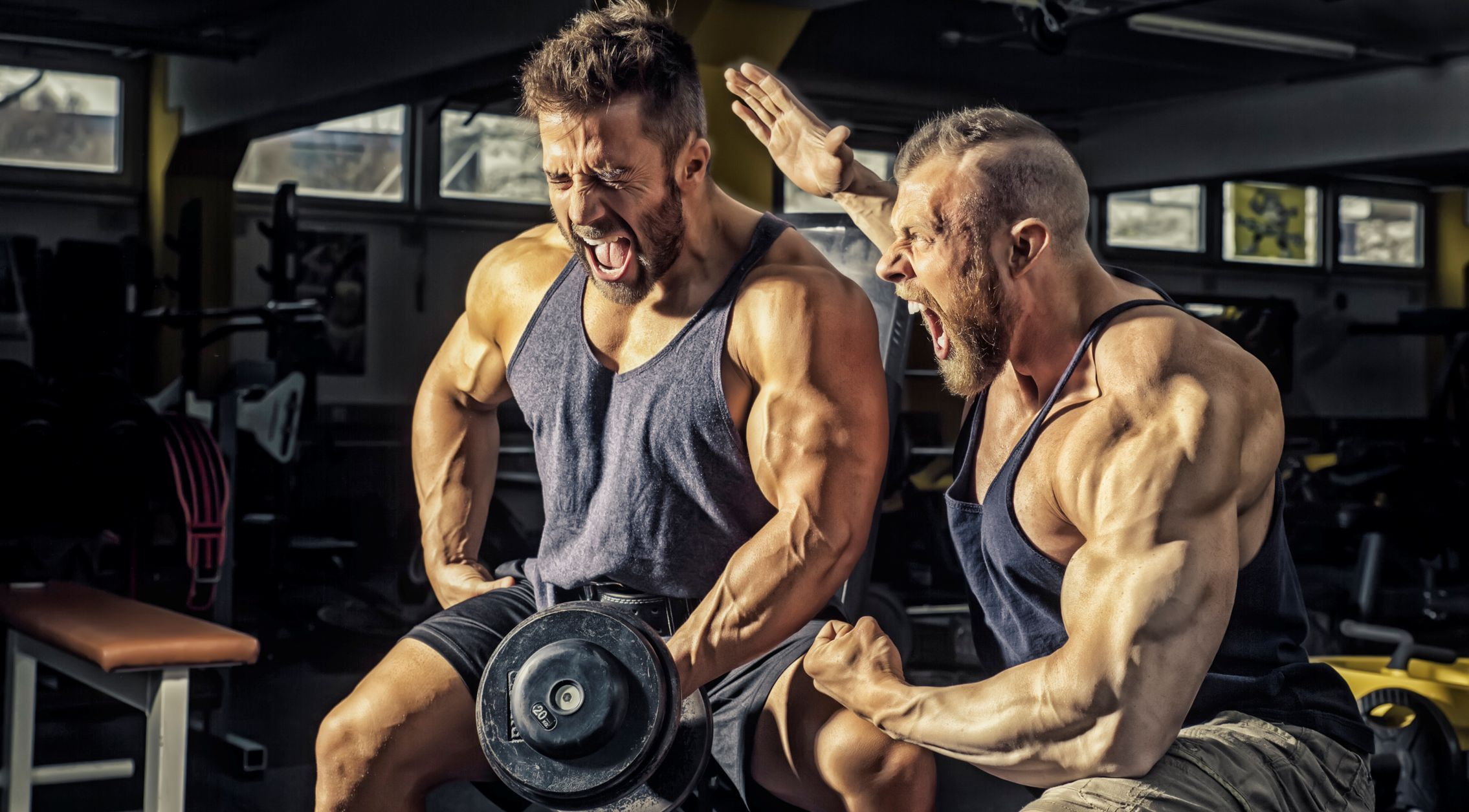 Sportnahrung Shop für Fitness und Bodybuilding